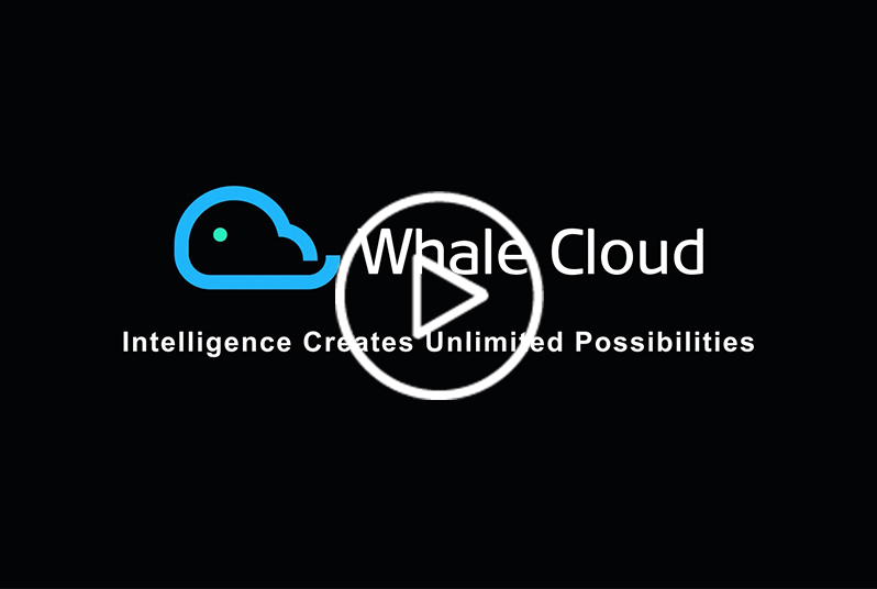"""title='<div style=""""text-align:center;""""> <span style=""""font-family:Arial, Helvetica, sans-serif;font-size:14px;color:#FFFFFF;""""><strong>Lightreading:Introducing the New Whale Cloud</strong></span> </div>'"""